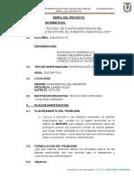 Perfil Del Proyecto Botanica 8