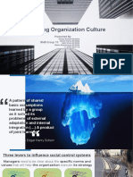 Shaping Organization's Culture_1