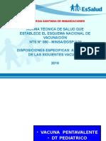 4.ESNI  Nuevo Esq de Vac Gral 2014.pptx