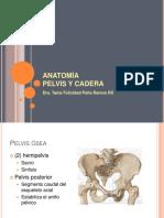 AnatomiaPelvisyCadera.pdf