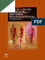 1 2048 Causas Ergonomicas Trastornos Musculoesqueleticos