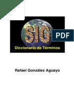 Diccionario GIS.pdf
