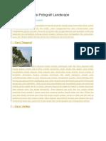 Aturan Komposisi Fotografi Landscape