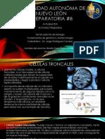 Act Integradora - Biotecnologia (2)