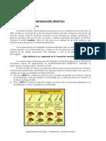 4-Biología-Plan-Común-Adn-y-Replicación