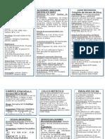 Protocolos APS 2013