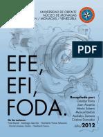 EFE, EFI y FODA