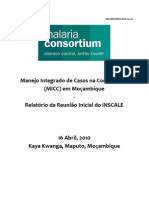 iNSCALE Mozambique Inception Meeting Report Portugues