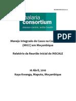 iNSCALE Mozambique Inception Meeting Report Portugues
