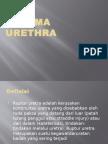 Porto Trauma Uretra