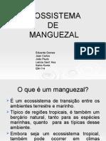 ECOSSISTEMA DE MANGUEZAL