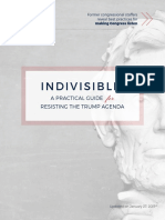 Indivisible Guide 2017
