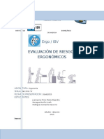 Proyecto Ergo Ibv