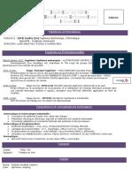 CV3ingenieur.pdf