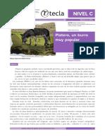 2014-6 Platero, Un Burro Muy Popular