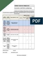 Matriz de Jerarquización Con Medidas de Prevención