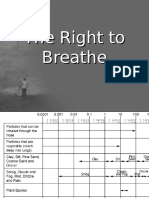 The Right to Breathe