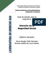 Guía Der Seg Social PDF