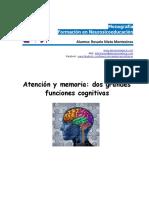 Monografia Neurosicoeducacion Rosario.nieto.montesinos