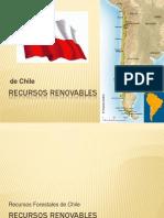 Recuros Renovables y Sus Politicas en El Medio Ambiente