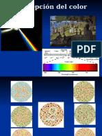 (Arte) (Psicología) (Español pps) Percepción del Color.pps