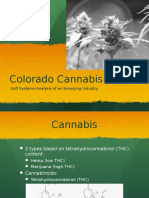 James Douglas Colorado Cannabis Presentation