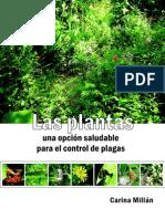 Plantas Una Opcion Saludable Para El Control de Plagas