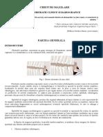 Chisturi Maxilare (99 Pagini)
