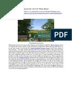 Chapple, R. M. 2014 Island Life. Part II. White Island. Blogspot Post