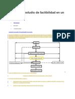 Qué Es El Estudio de Factibilidad en Un Proyecto (1)