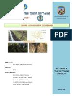 Sistemas y Proyectos de Drenaje