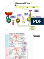 Autoimmune - Patologi umum