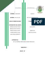 ensayo-trabajo-4 (2).docx