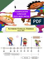 DCN NUEVO.pdf