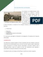 EL PAPEL DEL ZOOLOGICO EN LA ACTUALIDAD.docx
