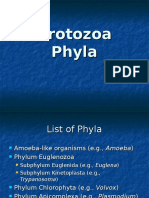 Protozoa-2.ppt