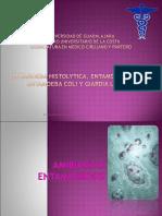 1 Entamoeba y Giardia