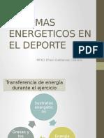 Sistemas Energeticos en El Ejercicio Primavera
