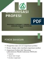 Etika Profesi ATLM Organisasi Profesi