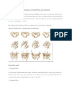 Types of Female Pelvis