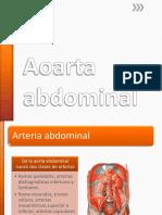 Aoarta Abdominal (1)