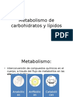 Metabolismo de carbohidratos 1.pptx