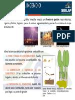 Seilaf Efectos en El Incendio Ignicion