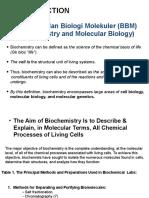 Bbm & Proteins