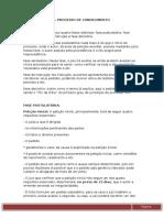 Estudos Para p1 de Processo Civil I