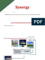 Synergy.pdf