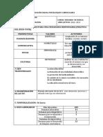 plananualcomputacion1-130512163608-phpapp02.pdf