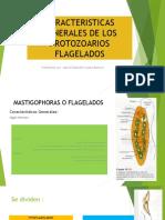 Caracteristicas Generales de Los Protozoarios Flagelados