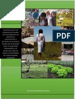Sistematización de experiencias locales de consolidación de dinámicas comunitarias y fomento de procesos locales de innovación para la seguridad alimentaria y el desarrollo local en el municipio de Yamaranguila, Honduras