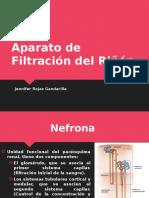 Aparato de Filtración del Riñón.pptx